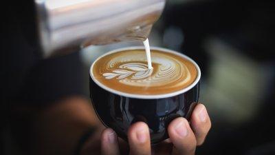 咖啡的种类_速溶咖啡_麝香猫咖啡