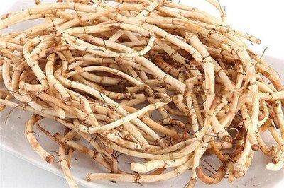 鱼腥草的功效与禁忌及副作用,鱼腥草的吃法插图1