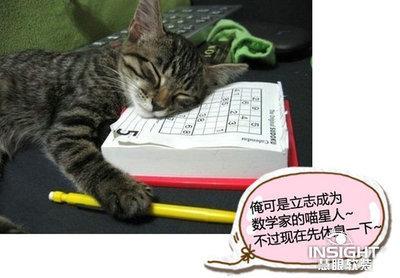 搞笑动物带字萌图_微信头像图片大全