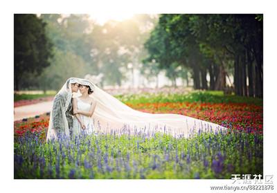 南京结婚照